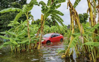 La tormenta Barry se acerca a Luisiana y amenaza con convertirse en huracán