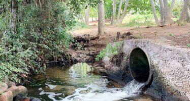 Cerveza para salvar los ríos y los mares