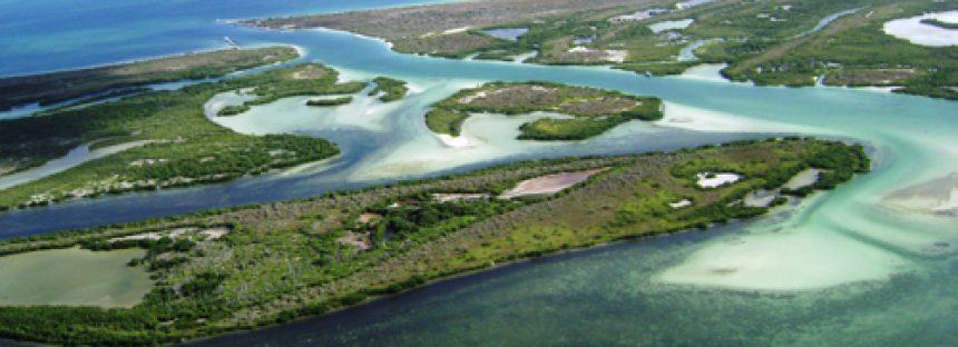 Reserva de la Biosfera Ría Lagartos