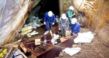 Un hallazgo en Lucena demuestra que en la Prehistoria ya había africanos en Europa