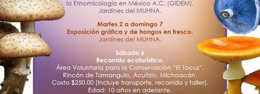 "XXXIV Exposición ""Hongos de los alrededores de Morelia"""