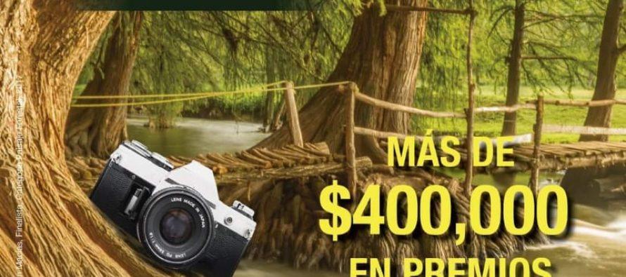 Concurso de fotografía visión forestal y centinelas del tiempo 2019