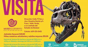 Visita el museo del desierto Chihuahuense