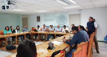 Invierte México más de 100 MDP para mejorar condiciones sanitarias y de inocuidad agroalimentarias en Michoacán