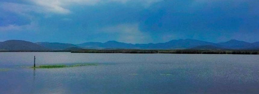 Rescatan último humedal del Valle de México