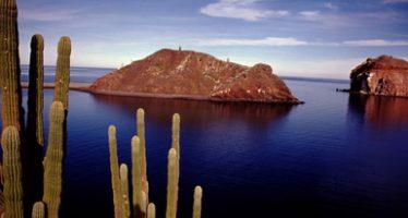 México fortalecen acciones para la conservación de las Islas y Áreas Protegidas del Golfo de California, totoaba y vaquita marina