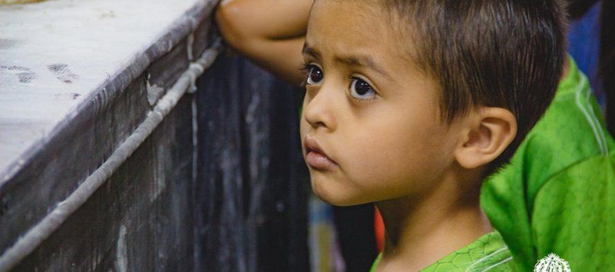 Premian a niños por concurso El tendedero del dinoarte, del Museo del Desierto de Coahuila