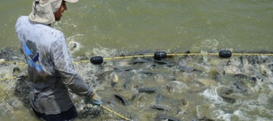 Dispersan recursos del Programa de Fomento a la Productividad Pesquera y Acuícola