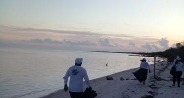 Hotel las Nubes de Holbox activa campaña de limpieza de playas y manglar en la reserva de Yum Balam