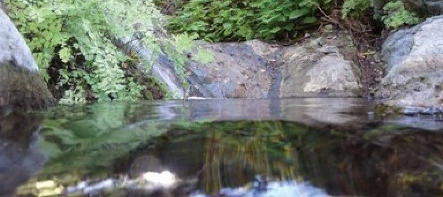 Terrenos nacionales en la Reserva de la Biósfera Sierra La Laguna en BCS, son destinados a la conservación