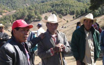 Asesinados, catorce ambientalistas en México en 2018