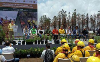 Campaña Nacional de Restauración da inicio en Veracruz
