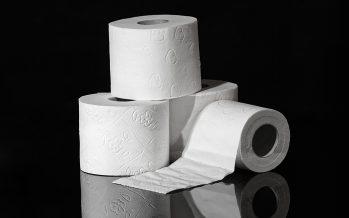 Los investigadores advierten que el papel higiénico es cada vez menos sostenible