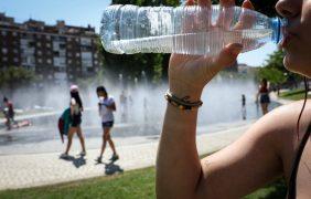 La OMS urge a investigar el impacto de los microplásticos en la salud