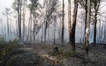 Los enormes incendios forestales en el Ártico lanzan una alerta planetaria