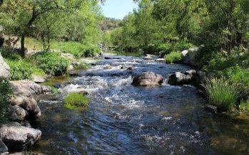 Se requieren derechos y protección legal para los ríos