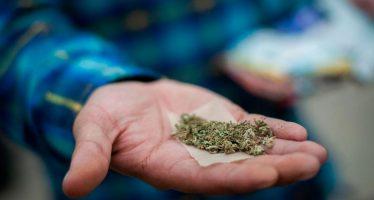 Frente a la política prohibicionista, México debe avanzar en la regulación del uso de la mariguana para pacificar al país