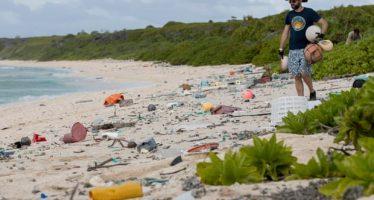 Isla Henderson: el paraíso del Pacífico que gime bajo 18 toneladas de desechos plásticos