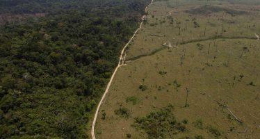 Deforestación en Brasil aumenta un 67% hasta julio, Gobierno critica los datos