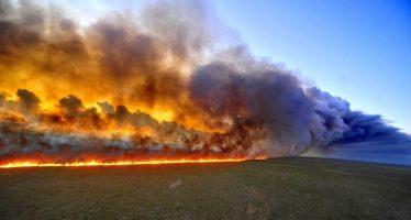La selva de la Amazonia en Brasil arde a una velocidad récord, advierte agencia espacial
