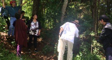ECOSUR asesora para conservación de la biodiversidad en entornos urbanos de Chiapas