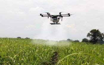 Cómo la tecnología digital puede ayudar a los pequeños agricultores de África