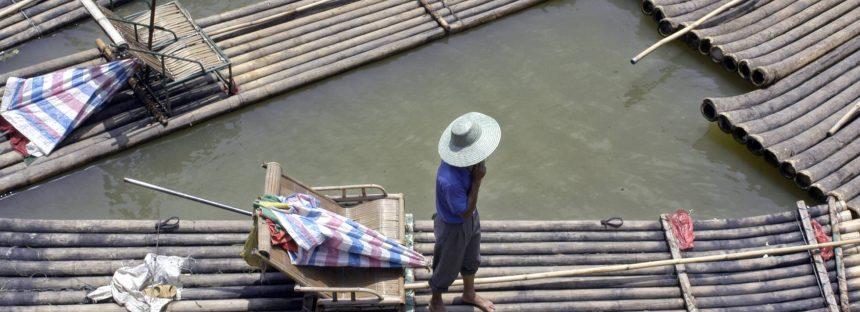 Bambú, la hierba contra la pobreza y la crisis climática en la que nadie (salvo China) piensa