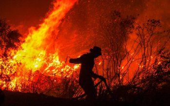Indonesia, al borde de una nueva catástrofe medioambiental por los incendios forestales