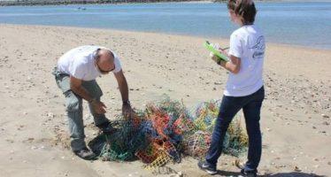 En busca de soluciones para la basura marina