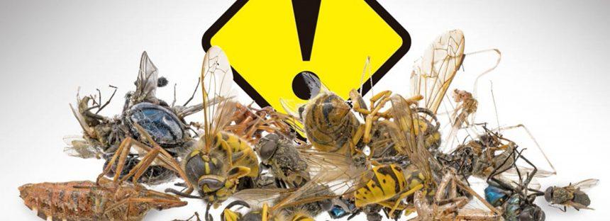 Un millón de especies pueden desaparecer debido a factores antropogénicos como el cambio climático: biólogo de la UNAM