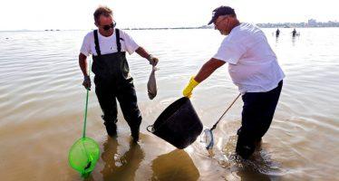 Los ecologistas advierten de que el plan de vertido cero del mar Menor contaminará el Mediterráneo