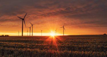 ¿Quieres frenar el cambio climático? Estas profesiones pueden ayudarte