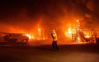 Clima, negligencia y mala suerte: las claves de los incendios de California