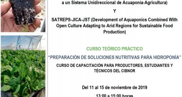 """Curso teórico-práctico """"Preparación de soluciones nutritivas para hidroponía"""""""