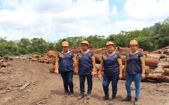 Lol Koopté: una sociedad de producción rural de mujeres mayas trabajando en lo profundo de la selva