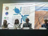 Cambio climático y contaminación afectan poblaciones de las tortugas marinas laúd, carey y lora