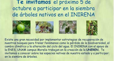 Siembra de árboles nativos en el INIRENA