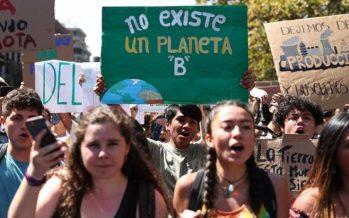 Los 'eco-héroes' que están cambiando nuestra relación con la naturaleza (y cómo seguir su ejemplo)