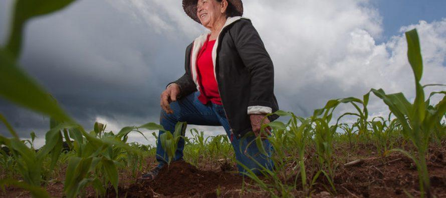 Resiliencia climática creada por mujeres y niñas rurales