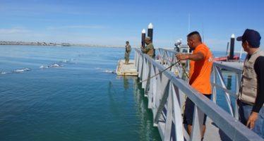 Fortalece Profepa la aplicación de la ley en el Alto Golfo de California