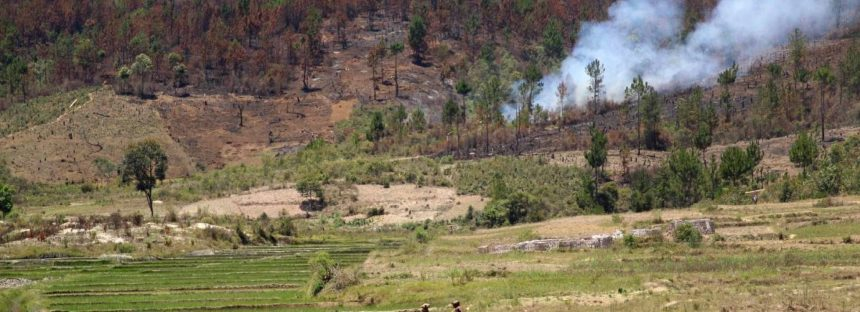 Las áreas protegidas cada vez protegen menos