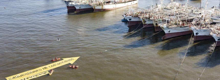 El mar argentino, víctima de la sobrepesca