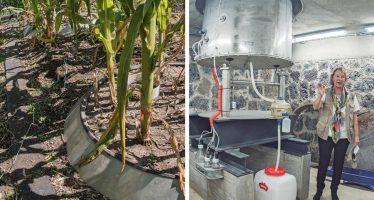 Investigan nutrientes en aguas residuales