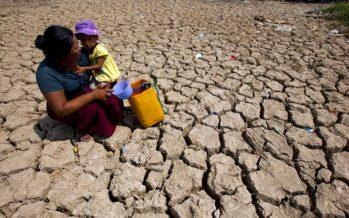 La crisis climática afectará la salud de los jóvenes durante toda la vida, advierten los médicos