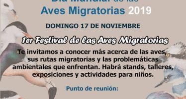 1er. Festival de las aves migratorias