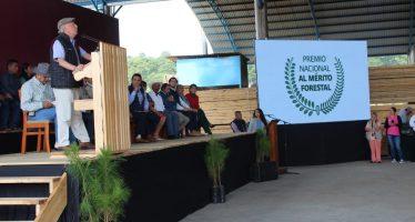 La política ambiental pretende apoyar la investigación científica de alta calidad y tomar en cuenta a la ciudadanía