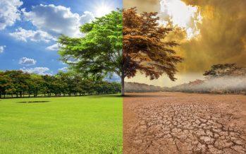 México pide la implementación de los compromisos no se detenga, ante el cambio de sede de la COP25