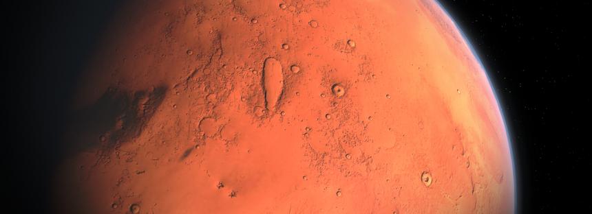Un entomólogo afirma tener pruebas de la existencia de «abejas» en Marte