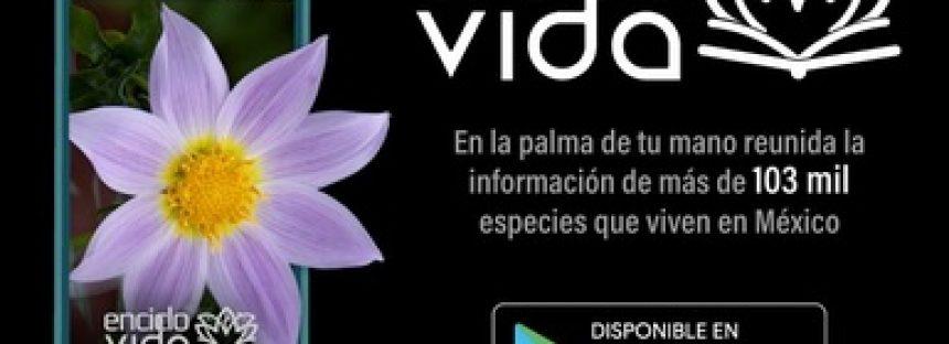 Lanzan aplicación móvil con la que podrás saber sobre las plantas y animales en México: EncicloVida