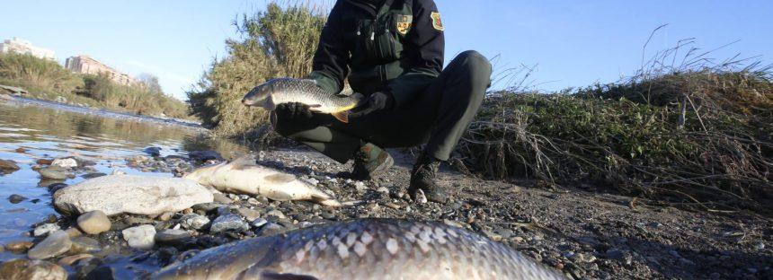 La Fiscalía investiga la contaminación en el río Besòs por el incendio de la planta química de Montornès